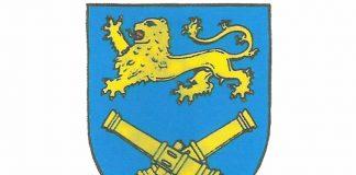 logo PzArtBtl 55